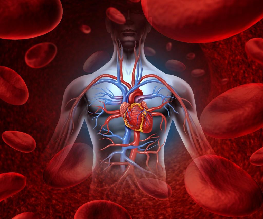 blood-cholesterol-level