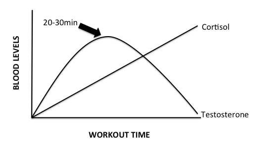 testosterone-cortisol-during-workout
