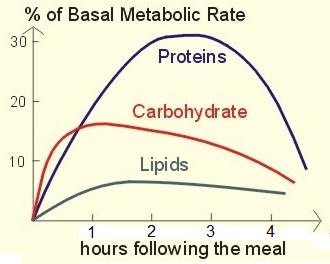 eat-more-meat-burn-more-fat-period-coachmikeblogs.com-mike-sheridan