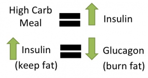 insulin-glucagon