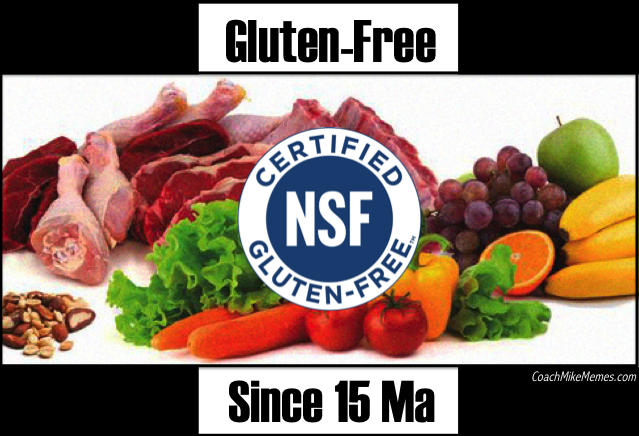 gluten-free-since-15ma-coachmikememes