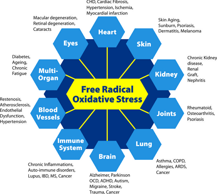 free-radicals.oxidative-damage.disease.degeneration