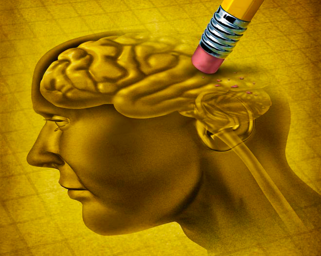 vegetarian-brain-loss